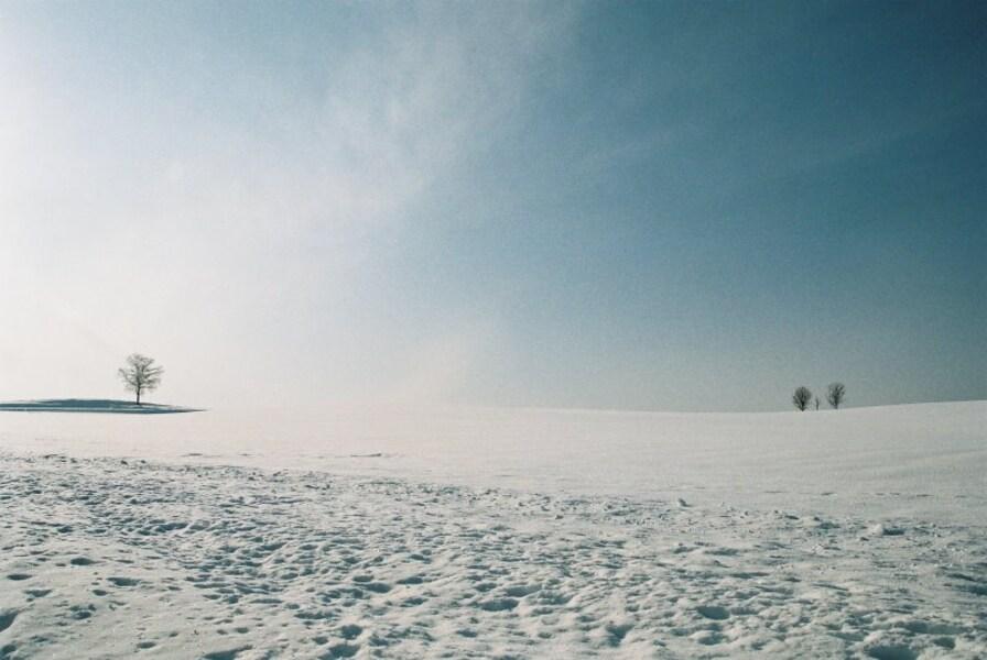 記憶に残る雪景色!美瑛・美馬牛の冬旅観光スポット