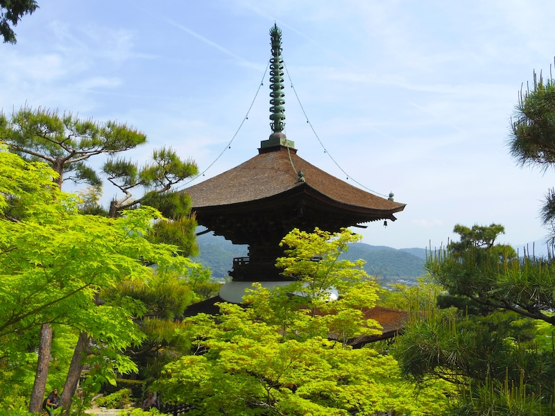 初夏の嵯峨野・嵐山へ!青もみじや苔に癒される旅