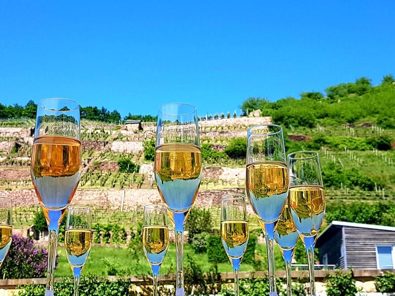 ドイツワイン完全ガイド!種類や等級、産地と人気銘柄