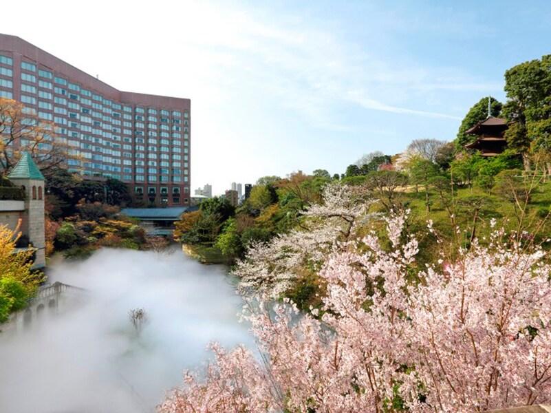 【2021年】東京のお花見は家&ソーシャルディスタンスで! おすすめの楽しみ方3選
