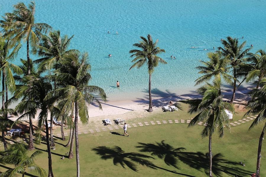 冬にベストシーズンを迎えるビーチ2017-2018