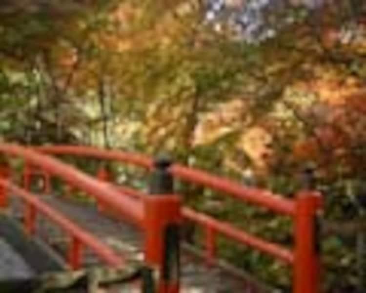 紅葉ライトアップの伊香保温泉へ行こう