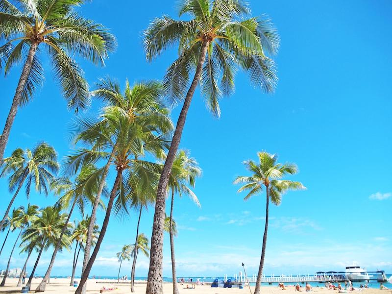 ハワイ4・5・6月におすすめの服装や絶対行きたいイベントセール