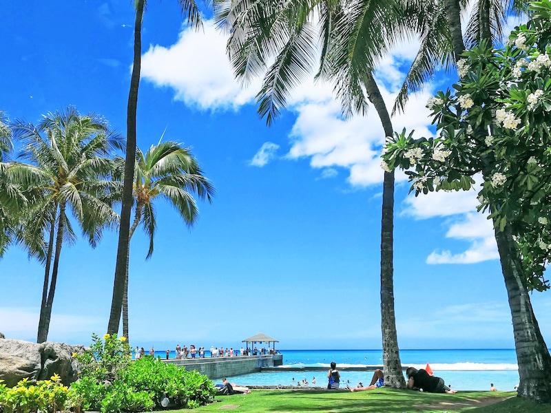 ハワイでやってはいけないこと!飲酒の年齢や交通ルール