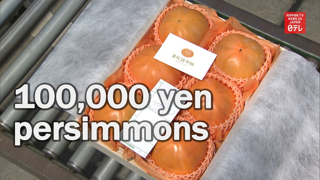 Persimmons: Only $1,000 Each!