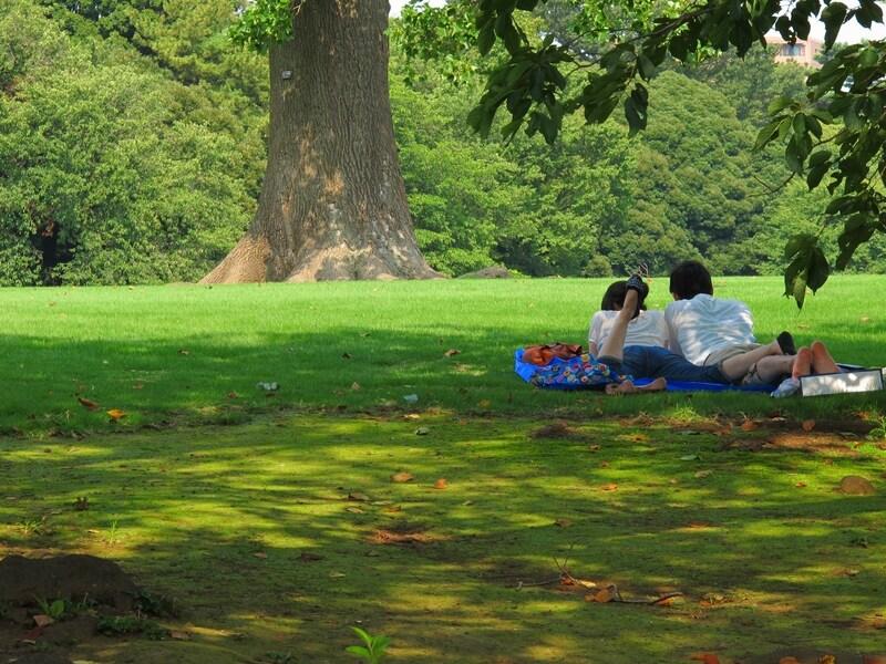 新宿御苑でピクニックデート!おすすめスポット・ランチ情報