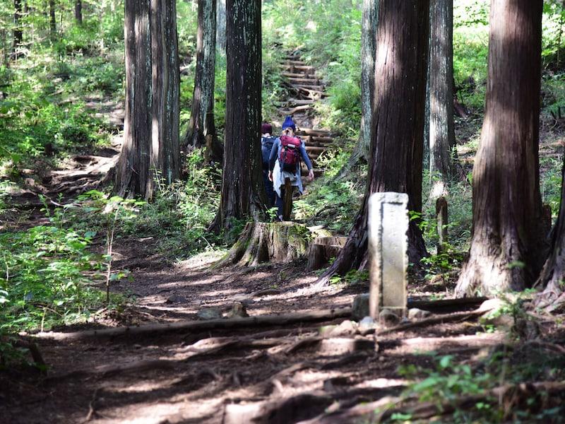 日帰りOK!首都圏の低山ハイキングコース10選