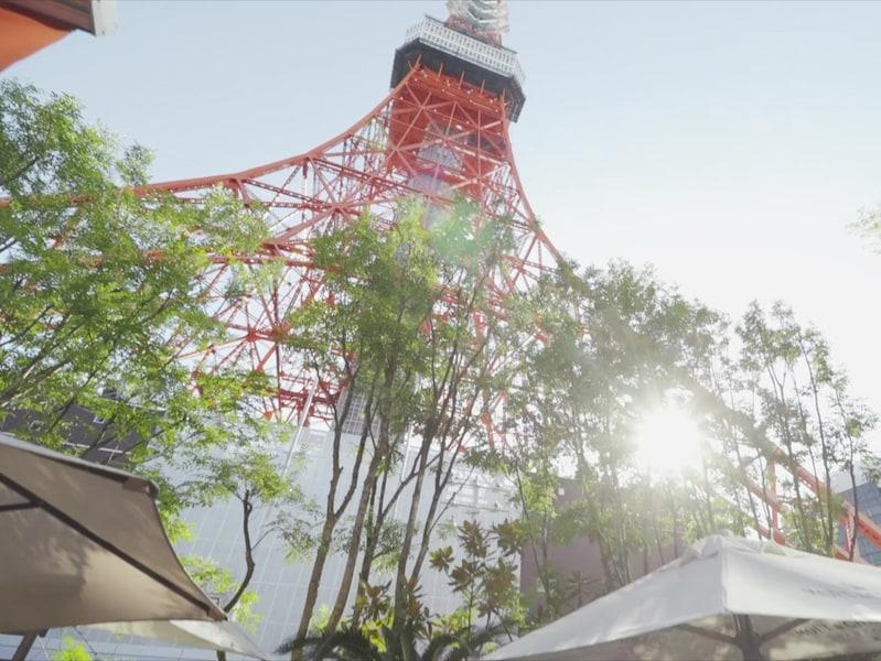 東京タワーの魅力を再発見!東麻布エリアの穴場スポット8選
