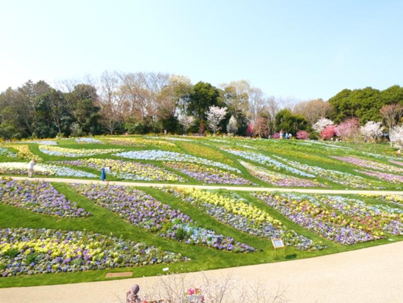 春の横浜を満喫!GWのおでかけにおすすめスポット&カフェ7選