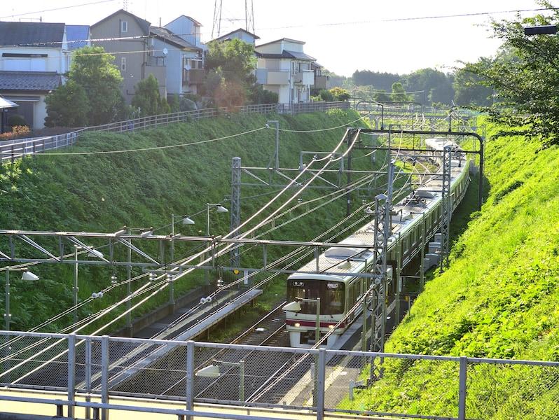 新宿から数十分で癒しの街へ!京王線沿線おすすめ観光スポット20選