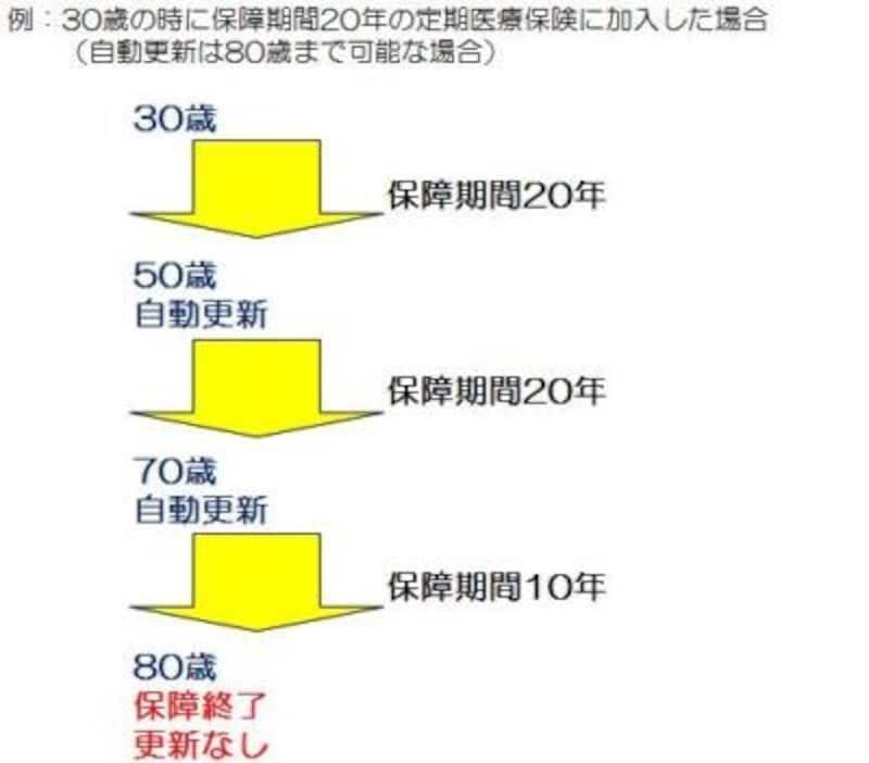 定期医療保険(年満了)