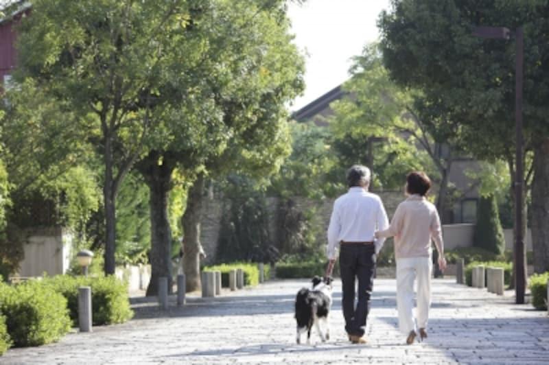 公的年金のうち、「障害年金」と「遺族年金」は非課税のため、そもそも確定申告は必要ない