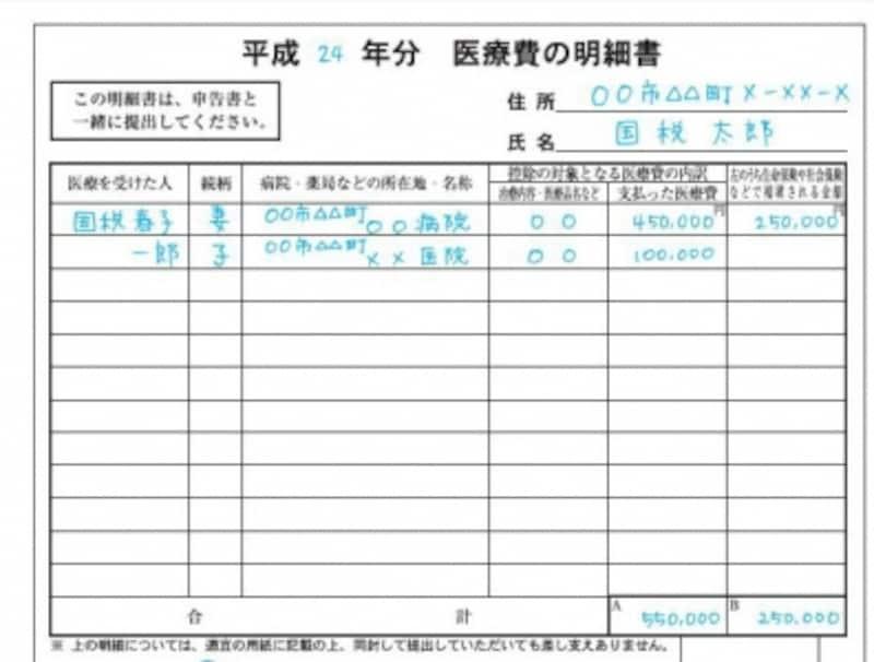 医療費の明細書の記載例(出典:国税庁ホームページ)