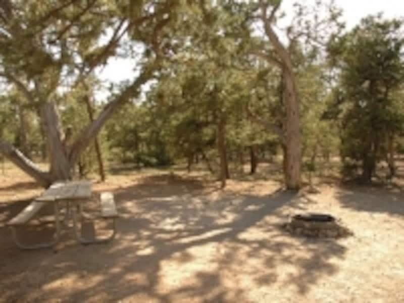 キャンプサイトにはテーブルとファイヤープレイスがある