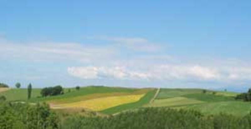 田園の丘陵風景はヨーロッパのよう