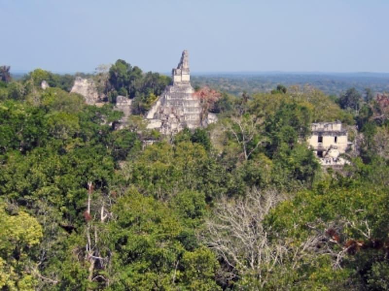 グアテマラの世界遺産「ティカル国立公園」