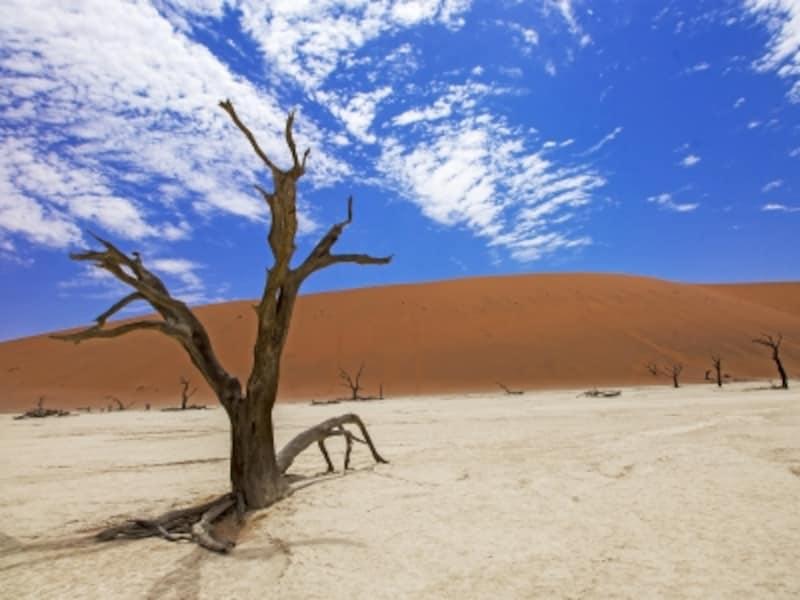 ナミビアの世界遺産「ナミブ砂海」