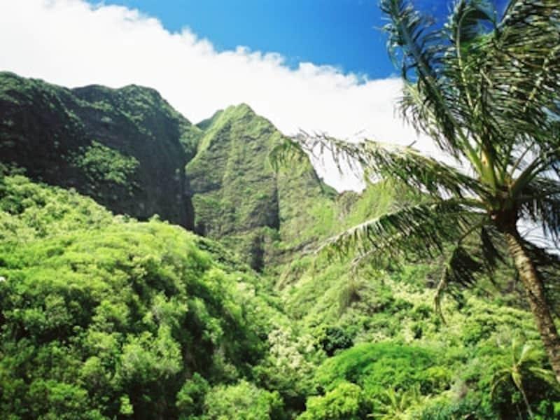 作家マーク・トゥエインが「太平洋のヨセミテ」と賞賛したイアオ渓谷