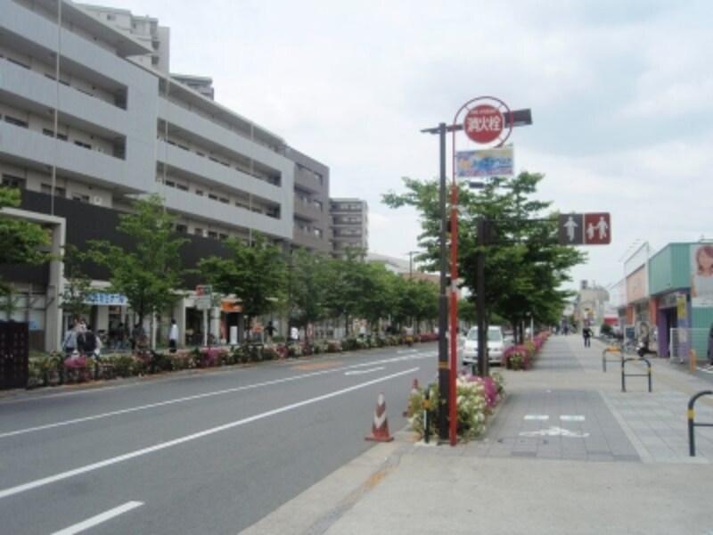 駅からアリオ西新井に向かうメインストリートundefined歩道が広く、安全だ