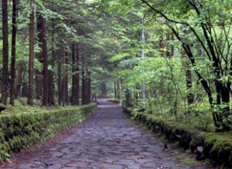 石畳に情緒を感じる、軽井沢を代表する散歩道、幸福の谷