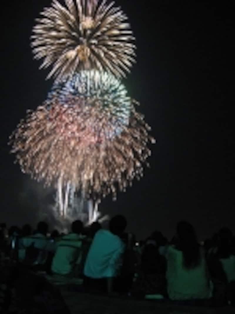 神奈川新聞花火大会では、安全対策のため、臨港パークとカップヌードルミュージアムパークの入場制限が行われます。入場を希望する方は事前申し込みの花火鑑賞券(有料)が必要となります(2011年撮影)