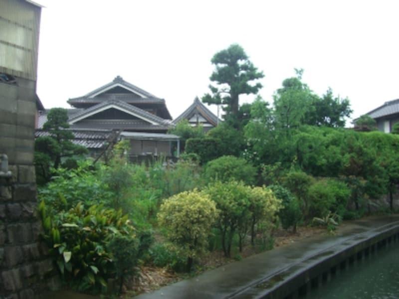 丁寧に手入れされた植木が目を引く木造住宅。幹線沿いだけ見ていては絶対に気づかない風景。