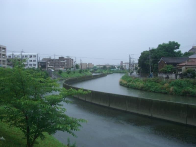 中学校北側に流れる安威川。この土手で本田が虫取りや釣りをして遊んでいた・・・かもしれない。