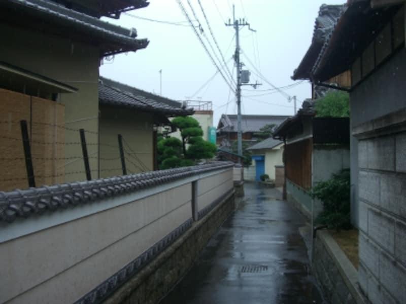 街路は狭いが一軒一軒の敷地が広い。