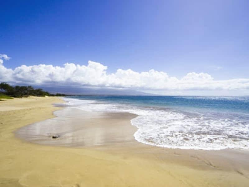 ローカルに人気のカマオレビーチ(画像協力:ハワイ州観光局)