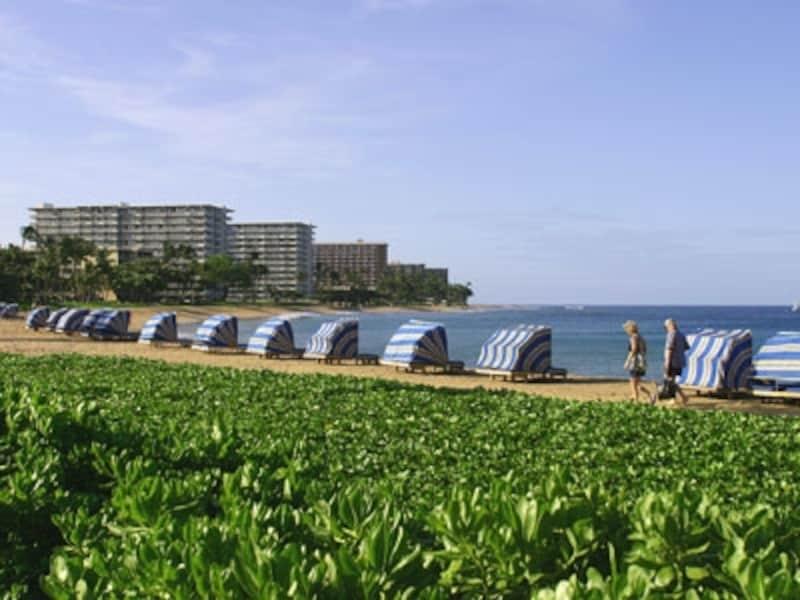 全米No.1に輝いた美しい白砂のカアナパリビーチ。開放感にあふれ、アクティブな滞在が楽しめる(画像協力:ハワイ州観光局)