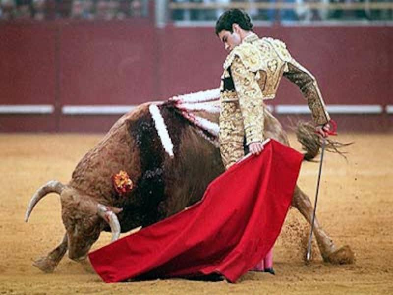 牛を必要以上に苦しめないよう一突きで殺すのがよい闘牛の基準