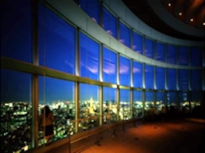 東京をの風景を上から眺められる