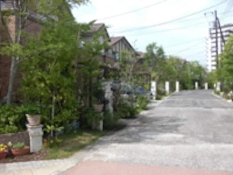 外構にまで配慮が行き届いた分譲住宅地の事例。緑が多く、宅地単体の美観のみならず街全体の雰囲気もいい