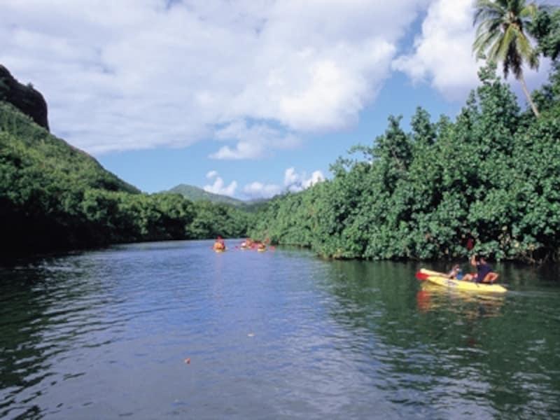 ジャングルの中を蛇行するワイルア川