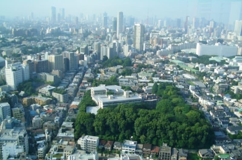 城南五山のひとつ島津山が眼下に。その向こうは東京タワー、六本木ヒルズを臨む