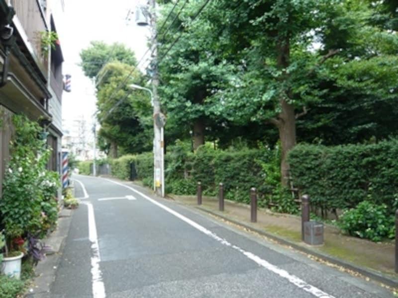 右側の森が霊園。文豪が顔を覗かせそうな趣ある住宅街の中、雑司ヶ谷霊園はあります