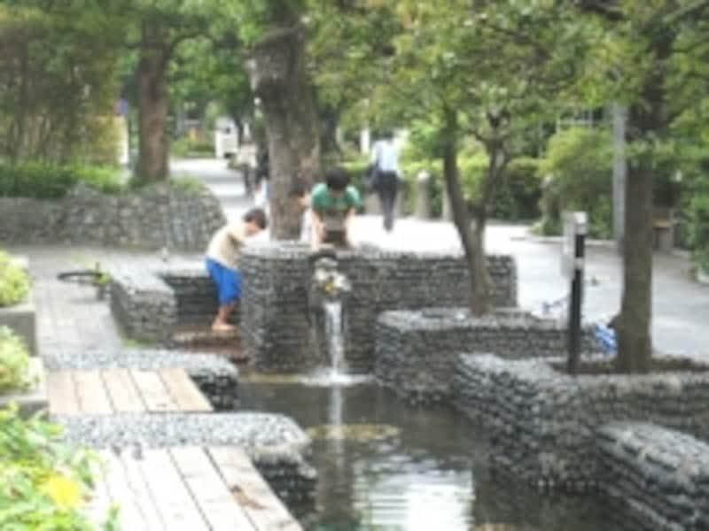 子どもにとっては遊び場も多く、自然に触れ合える街用賀。あちこちで子どもの声が聞こえたのが印象的だった