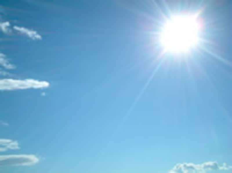 日のあたりやすい場所は影もできやすい…