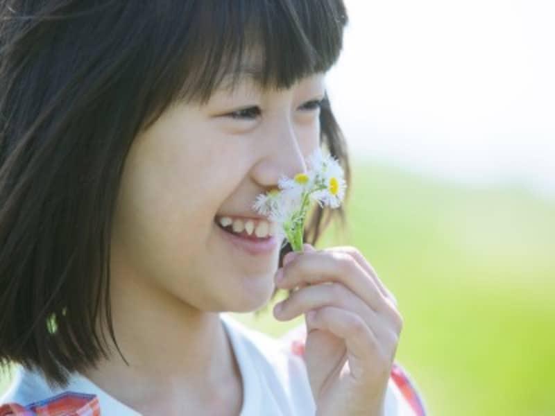 押し花の簡単作り方