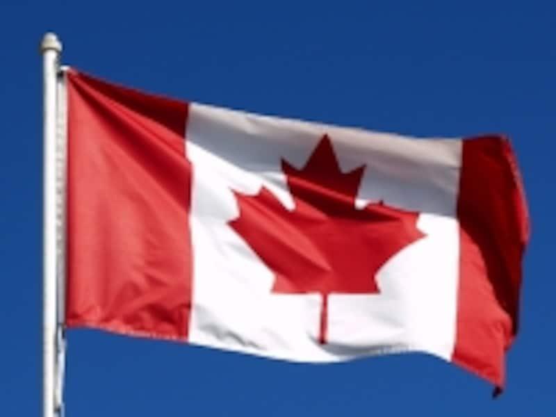 国旗にもデザインされているメープルはカナダの象徴