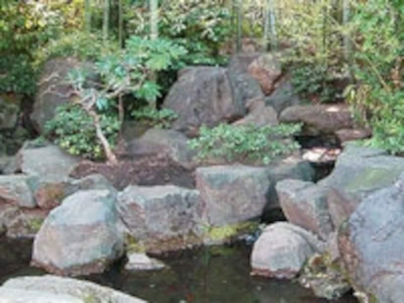 池や水の流れを取り入れた日本庭園