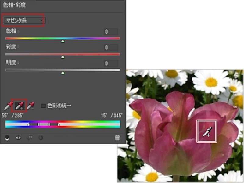「マゼンダ系」で「サンプルに追加」アイコンをクリックして花びらをドラッグ