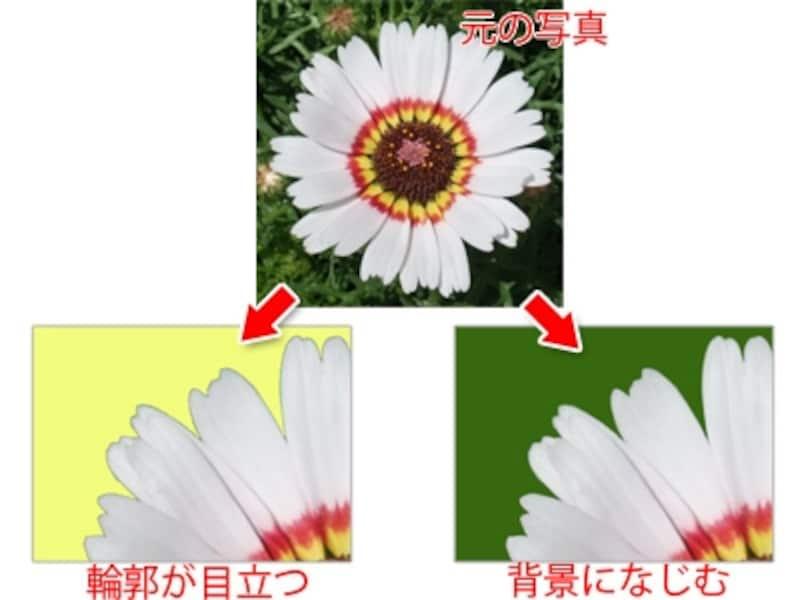 元の写真の背景の色よりも薄いと、輪郭が目立ってしまうが、同じような色の背景に貼り付けると輪郭が自然になじむ