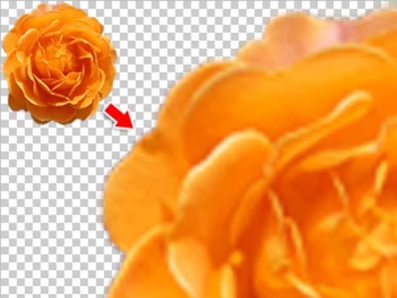 小さい画像を拡大すると、色が粗く輪郭もぼけてしまう