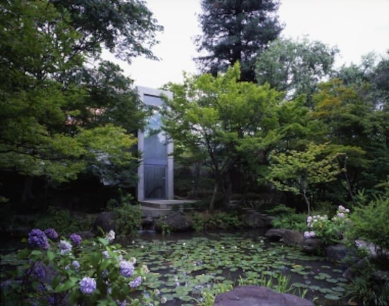 モネの絵のような池のある庭園