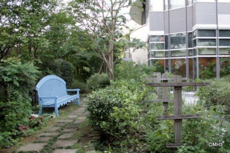 1階ガーデン