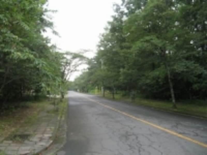 平坦な地形で定住者が多い「塩原リゾートタウン」の別荘地