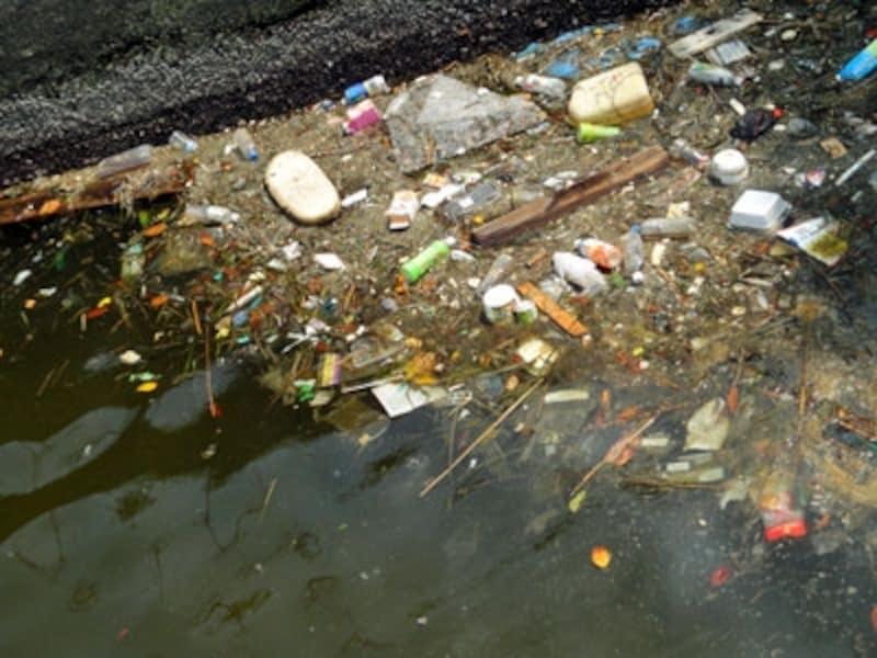「みなとみらい」地区に入ると水面にゴミが目立つのはたいへん残念!