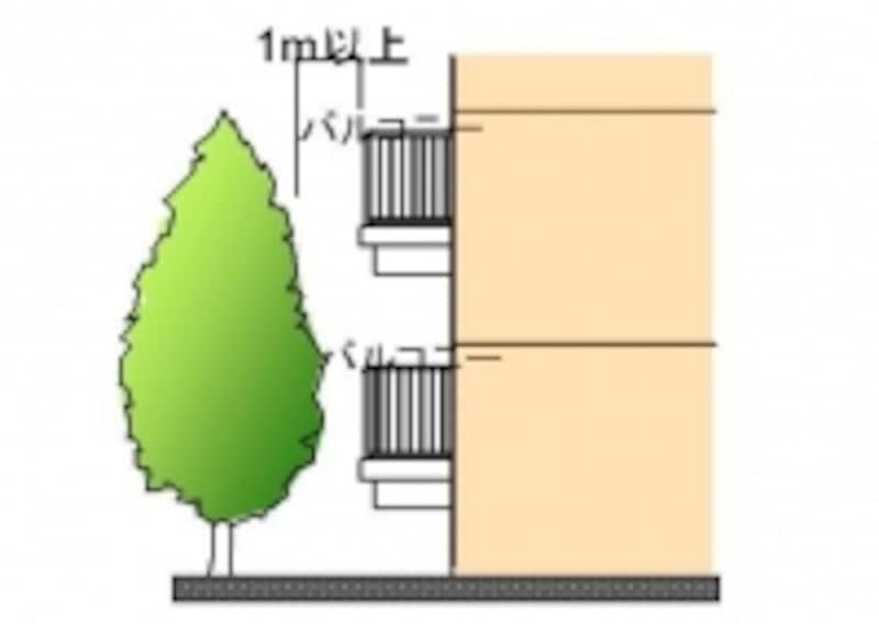 バルコニーと植栽が近いとドロボウの足がかりになり、低層階は特に危険。1メートル以上離れているか確認を。