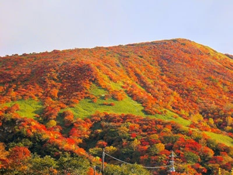 那須飯盛山の紅葉